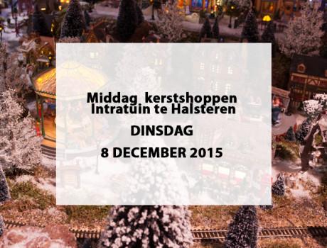 Middag kerst shoppen intratuin te halsteren for Kerstmarkt haarzuilen 2016