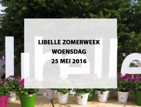 Libelle Zomerweek te Almeerderstrand, woensdag 25 mei 2016